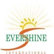 Evershine International Logo