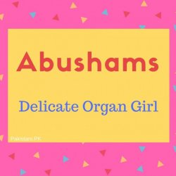 Abushams Name Meaning Delicate Organ Girl.