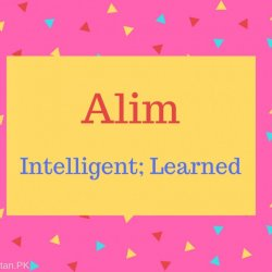 Alim Name Meaning Intelligent; Learned.