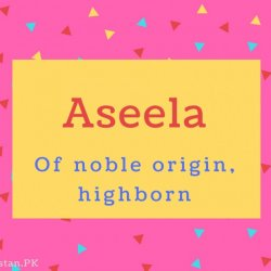 Aseela name Meaning Of noble origin, highborn
