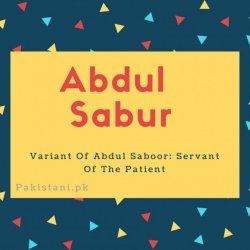 Abdul sabur name meaning Variant Of Abdul Saboor- Servant Of The Patient