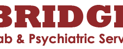 Bridge Rehab and Psychiatric Services Logo