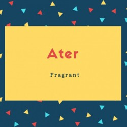 Ater Name Meaning Fragrant