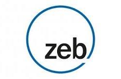 Zeb & Company Logo
