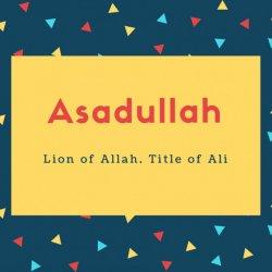 Asadullah Name Meaning Lion of Allah. Title of Ali