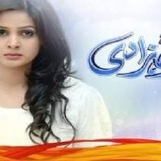 Shehryar Shehzadi - Full Drama Information