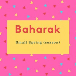 Baharak Name Meaning Small Spring (season)