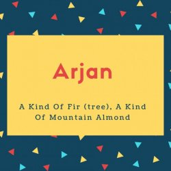 Arjan Name Meaning A Kind Of Fir (tree), A Kind Of Mountain Almond