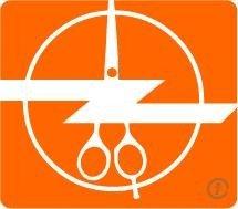 Zingzon Instruments Logo
