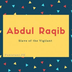 Abdul Raqib