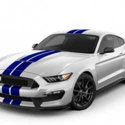 Ford Mustang Shelby GT350R 2017 - Complete Information