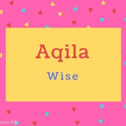 Aqila Name Meaning Wise.