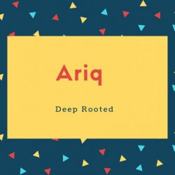 Ariq Name Meaning Deep Rooted
