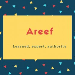 Areef Name Meaning Learned, expert, authority
