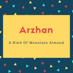 Arzhan Name Meaning A Kind Of Mountain Almond