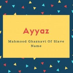 Ayyaz Name Meaning Mahmood Ghaznavi Of Slave Name