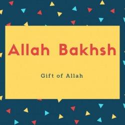 Allah Bakhsh Name Meaning Gift of Allah