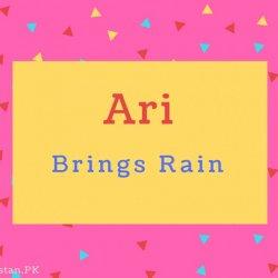 Ari Name Meaning Brings Rain.
