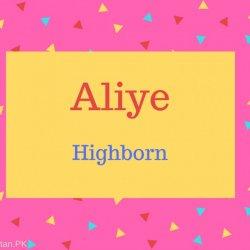 Aliye Name Meaning Highborn.