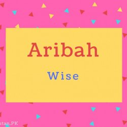 Aribah name Meaning Wise.