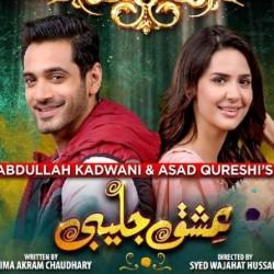Ishq Jalebi - Full Drama Information
