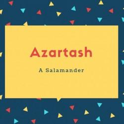 Azartash Name Meaning A Salamander