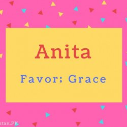 Anita Name Meaning Favor; Grace.