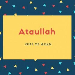 Ataullah Name Meaning Gift Of Allah