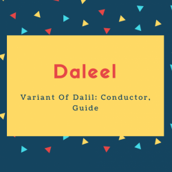 Daleel Name Meaning Variant Of Dalil_ Conductor, Guide