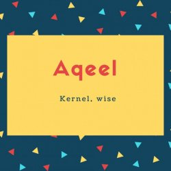 Aqeel Name Meaning Kernel, wise