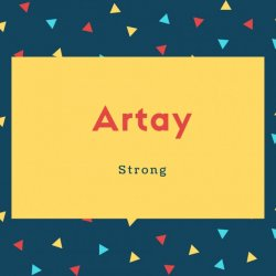 Artay Name Meaning Strong