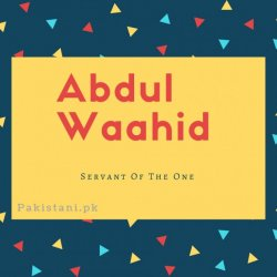 Abdul waahid name meaning Servant Of The one.