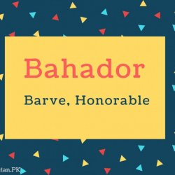 Bahador Name Meaning Barve, Honorable