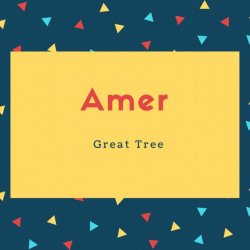 Amer Name Meaning Great Tree