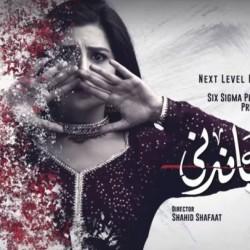 Surkh Chandni - Full Drama Information