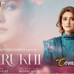 Berukhi - Full Drama Information
