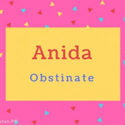 Anida Name Meaning Obstinate.