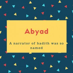 Abyad Name Meaning A narrator of hadith was so named