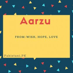 Aarzu name meaning Wish, hope, love.