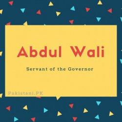 Abdul Wali
