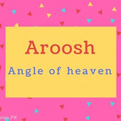 Aroosh name Meaning Angle of heaven.