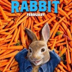 Peter Rabbit 003