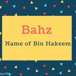 Bahz Name Meaning Name of Bin Hakeem