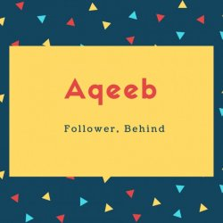 Aqeeb Name Meaning Follower, Behind