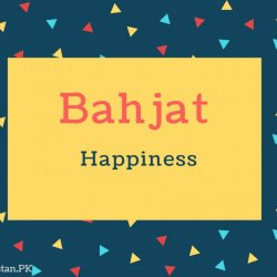 Bahjat Name Meaning Happiness