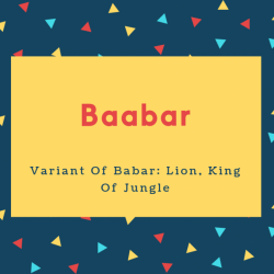 Baabar Name Meaning Variant Of Babar_ Lion, King Of Jungle