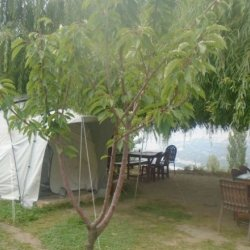 Hunza Panorama Hotel and Camping Site 1