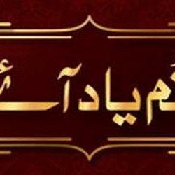 Tum Yaad Aaye002