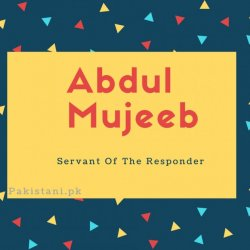 Abdul mujeeb name meaning Servant Of The Responder.