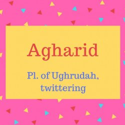 Agharid name meaning Pl. of Ughrudah, twittering
